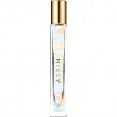 Coral Palm by Aerin