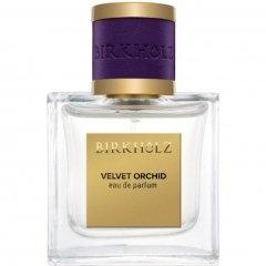 Velvet Orchid by Birkholz