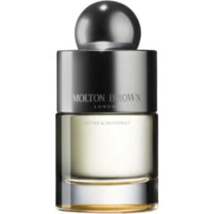 Vetiver & Grapefruit by Molton Brown