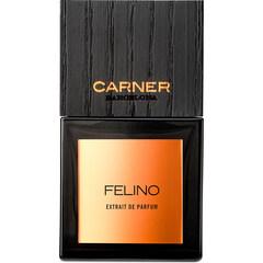 Felino von Carner