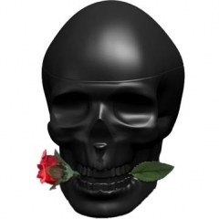 Skulls & Roses for Him by Ed Hardy
