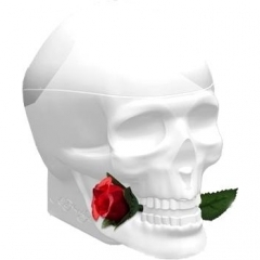 Skulls & Roses for Her by Ed Hardy