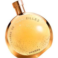 L'Ambre des Merveilles by Hermès