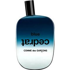 Blue Invasion - Blue Cedrat by Comme des Garçons