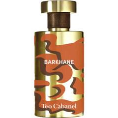 Barkhane von Téo Cabanel