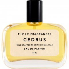Cedrus by Fiele Fragrances