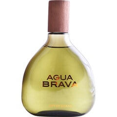 Agua Brava (After Shave) von Puig