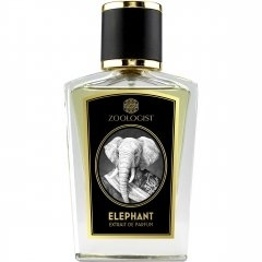 Elephant by Zoologist