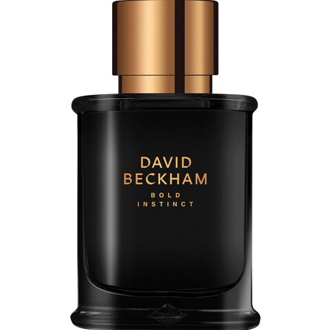 Bold Instinct by David Beckham
