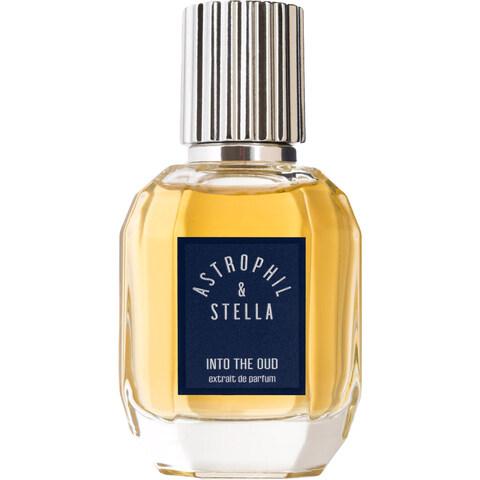 Into The Oud von Astrophil & Stella