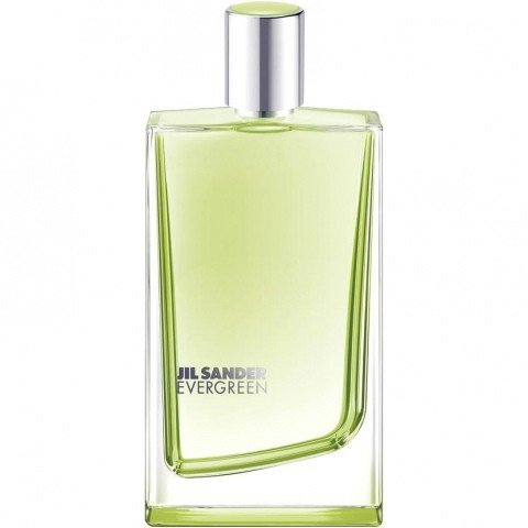 Evergreen by Jil Sander