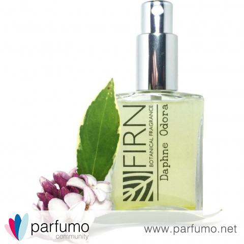 Daphne Odora by Firn Botanical Fragrance