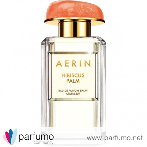 Hibiscus Palm by Aerin