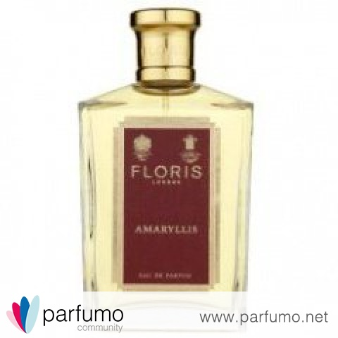 Amaryllis by Floris