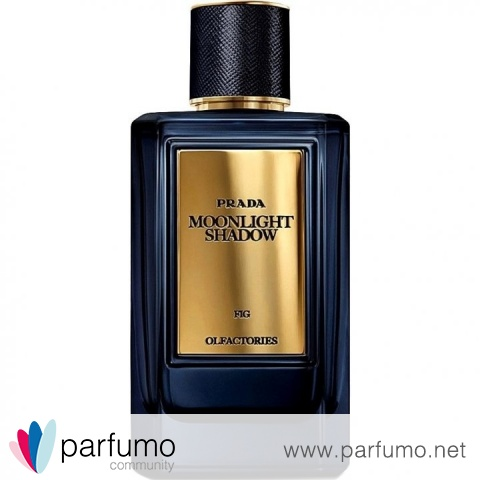 Olfactories - Moonlight Shadow by Prada