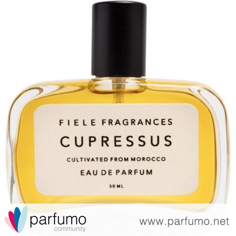 Cupressus von Fiele Fragrances