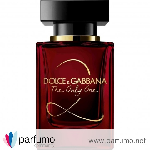 dolce gabbana the only one woman