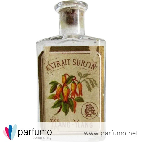 Extrait Surfin Ylang-Ylang by Unknown Brand / Unbekannte Marke