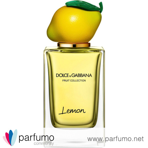 Fruit Collection - Lemon by Dolce & Gabbana