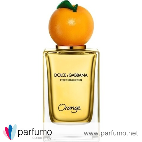 Fruit Collection - Orange by Dolce & Gabbana