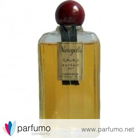 Narcyolis Extrait 90° by Carnaud