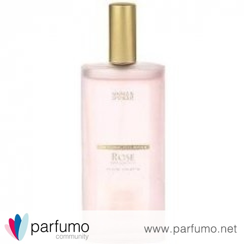 Floral Collection - Rose / Rosa Centifolia by Marks & Spencer