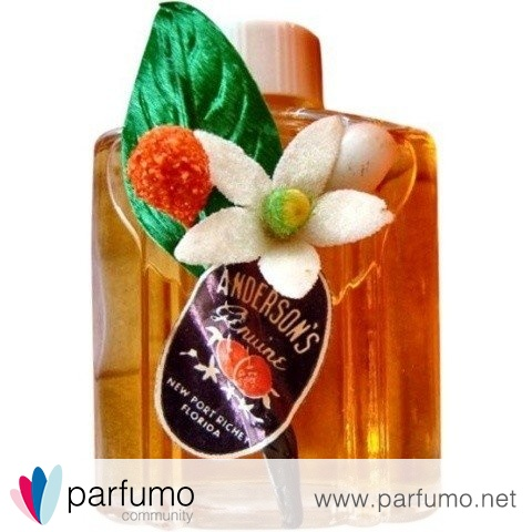Orange Blossom Perfume / Genuine Orange Blossom