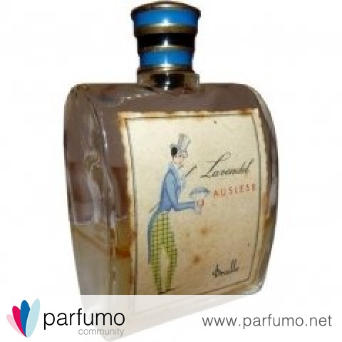 Lavendel Auslese by Dralle