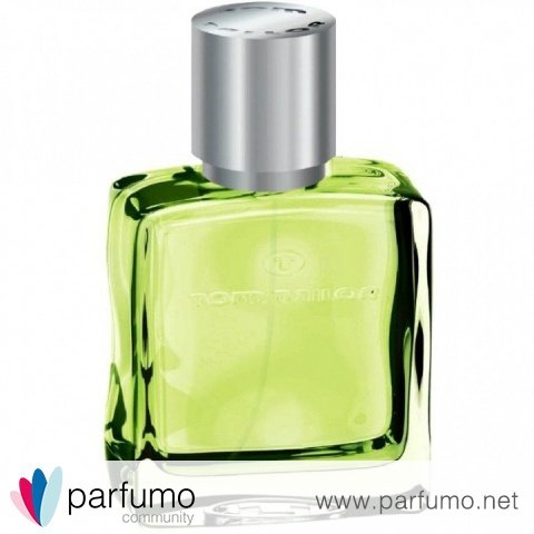 Liquid Lime by Tom Tailor