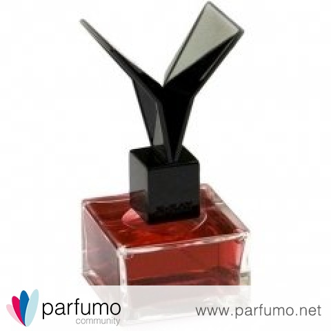 Lacquered Rose by X-Ray / RXR