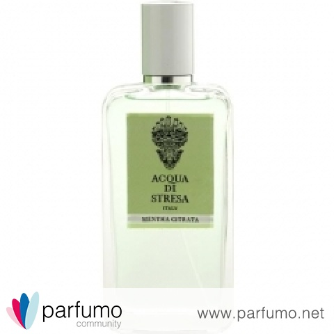 Mentha Citrata by Acqua di Stresa