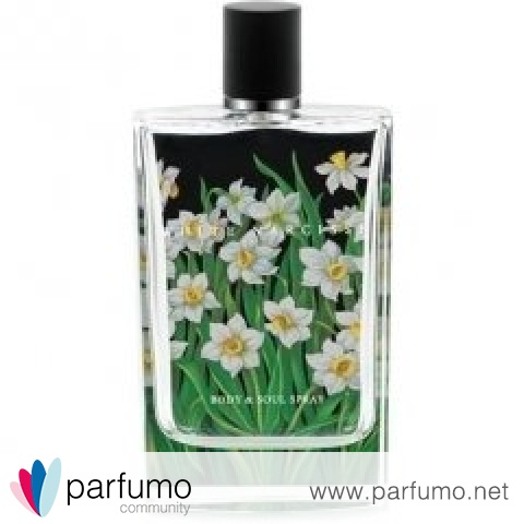 White Narcisse by Nest