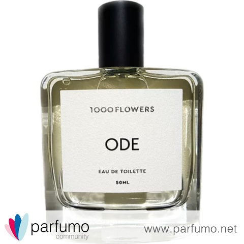 Ode For Him by 1000 Flowers