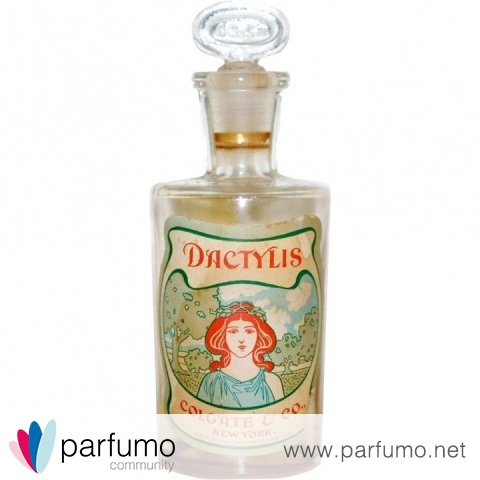Dactylis by Colgate & Company