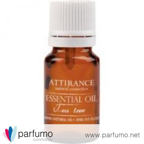Essential Oil - Tea Tree von Attirance
