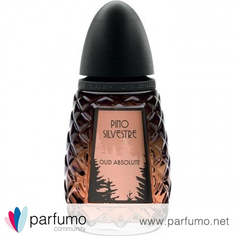 Oud Absolute by Pino Silvestre