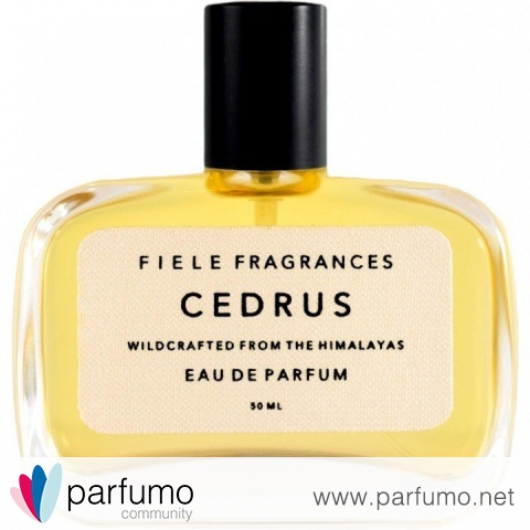 Cedrus von Fiele Fragrances