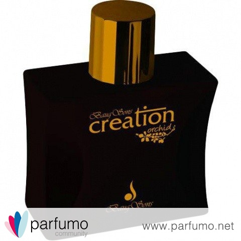 Creation Orchid by Baug Sons
