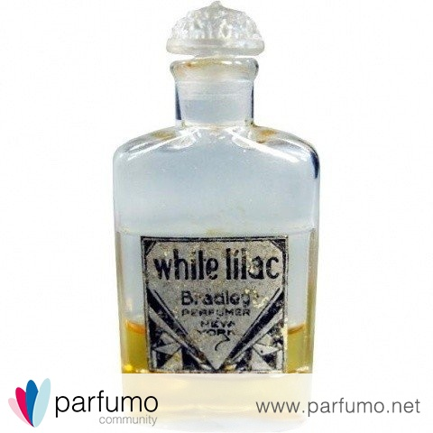 White Lilac by Bradley Perfumer New York / D. R. Bradley & Son