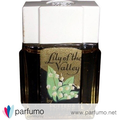 Lily of the Valley by Potter & Moore