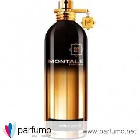 Spicy Aoud / Aoud Spicy Musk by Montale
