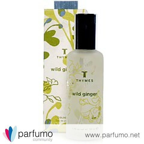 Wild Ginger by Thymes