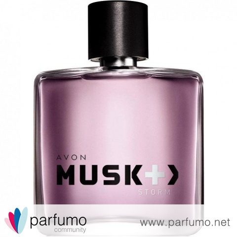 Musk Storm by Avon