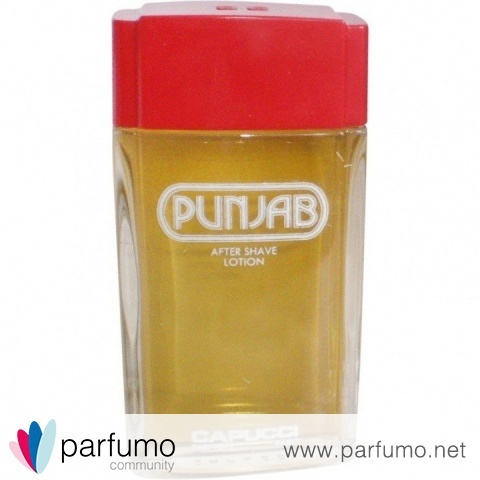 Punjab (After Shave Lotion) by Roberto Capucci