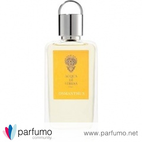 Osmanthus by Acqua di Stresa