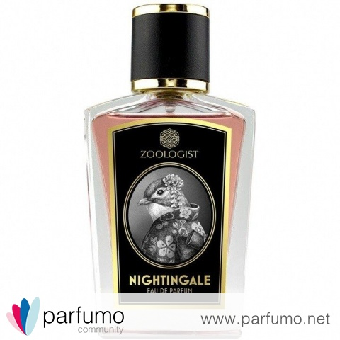 Nightingale by Zoologist