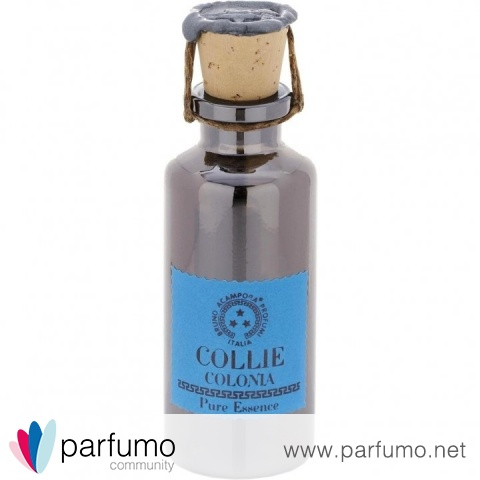 Collie / Colonia (Perfume Oil) by Bruno Acampora