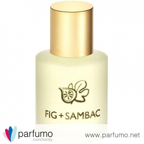 Fig + Sambac by Terranova