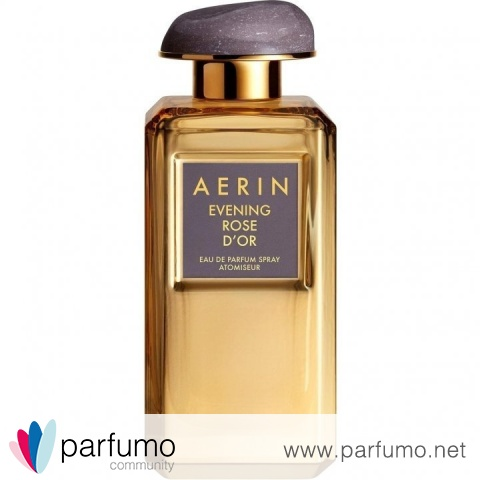 Evening Rose d'Or von Aerin