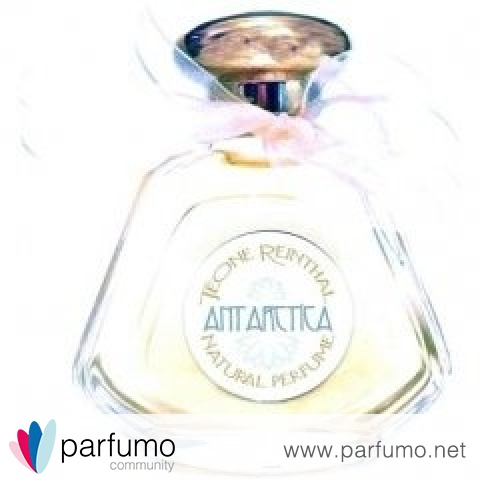 Antarctica by Teone Reinthal Natural Perfume